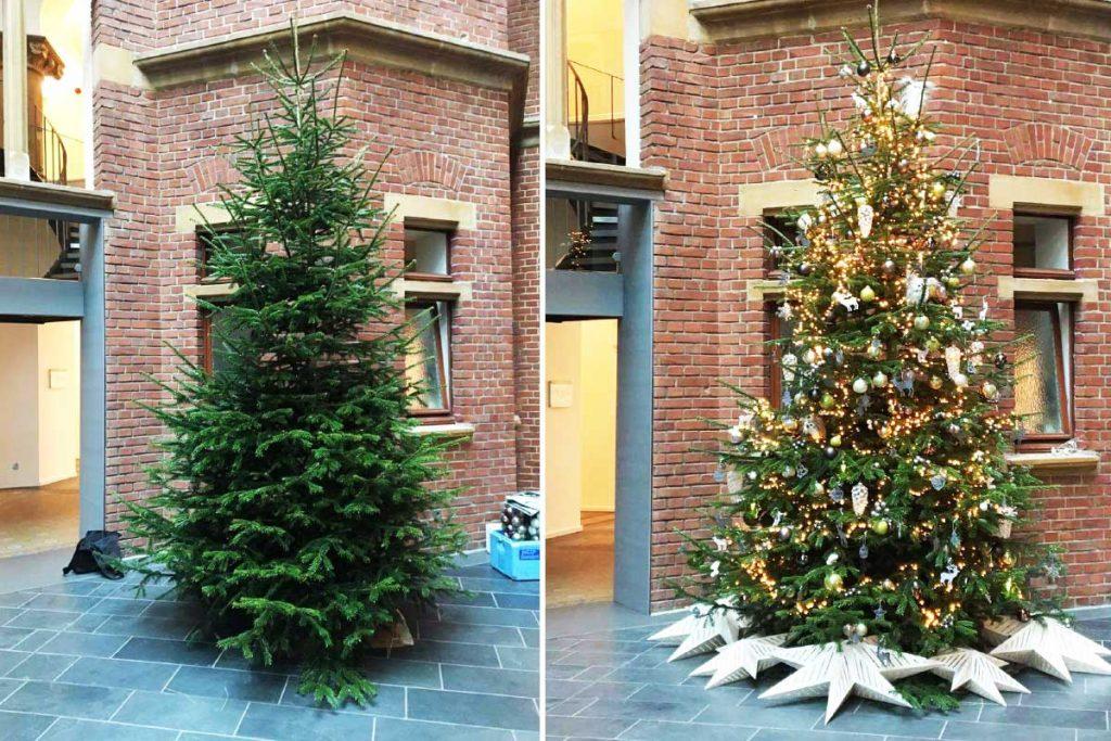 4 Meter Premium-Baum