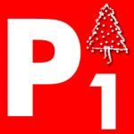 Lieferpauschale 1 - Weihnachtsbaum Köln