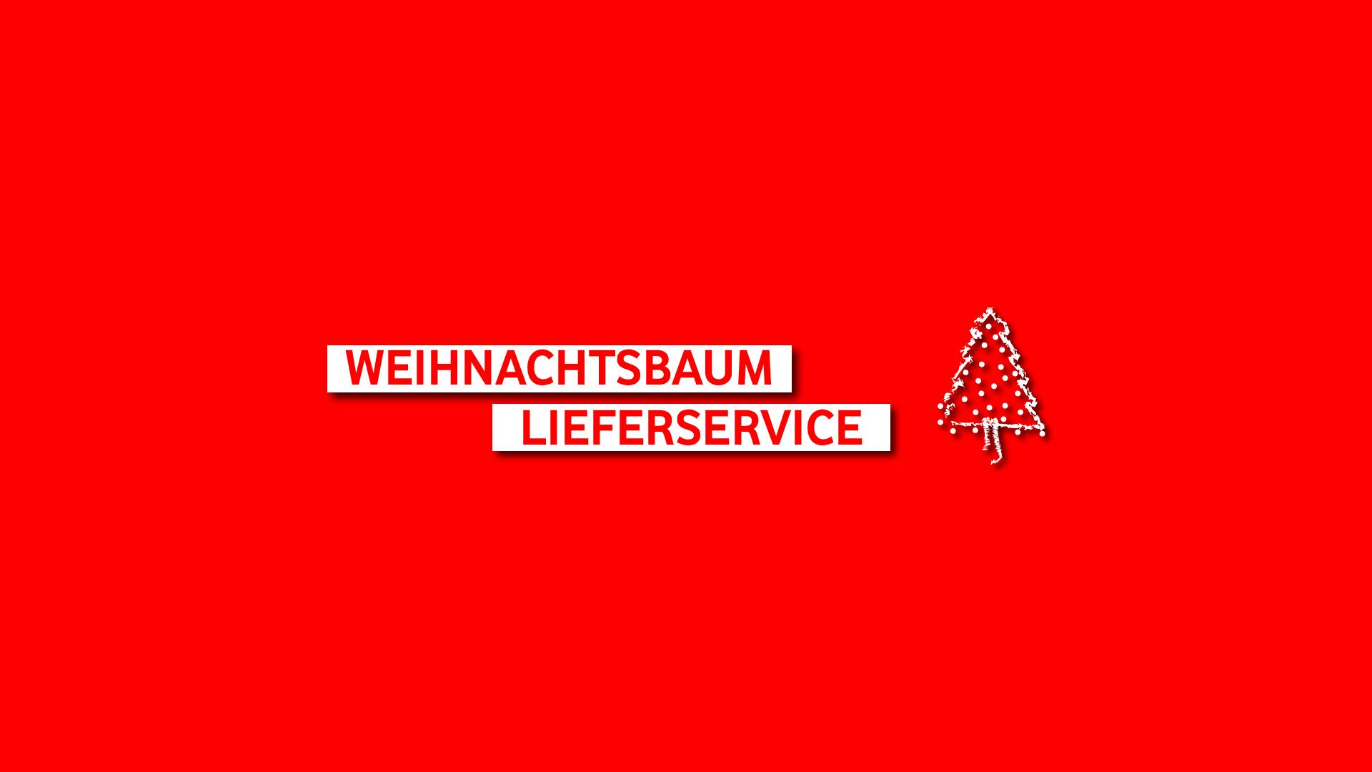 Weihnachtbaum Köln